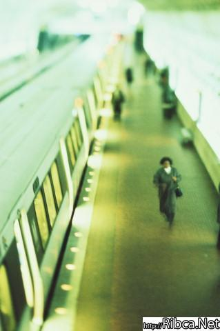 gallery_172_16050.jpg