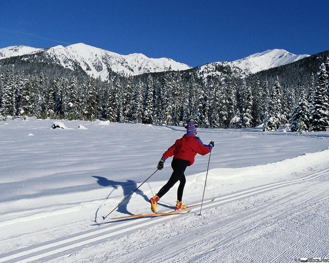 Как сделать чтобы лыжи ехали быстро