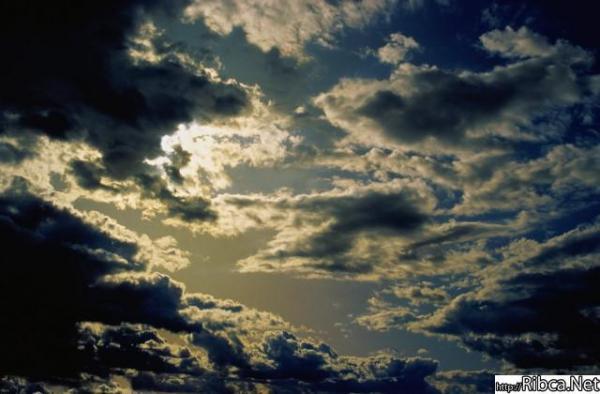 gallery_242_19653.jpg